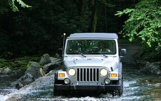 Balsam Mountain Offroading: Heintooga Round Bottom Road