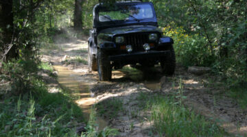 Have Jeep Will Travel… Offroading At Land Between The Lakes & Turkey Bay OHV Trails (Videos)