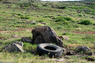 tire-on-side-of-road-in-aruba.jpg